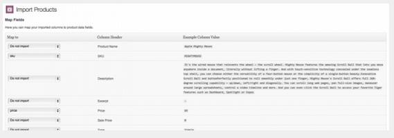 interfaz Product CSV Import Suite