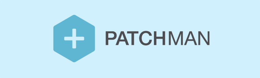 WordPress Seguro Patchman