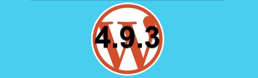 WordPress 493 actualización de mantenimiento y ¿Seguridad?