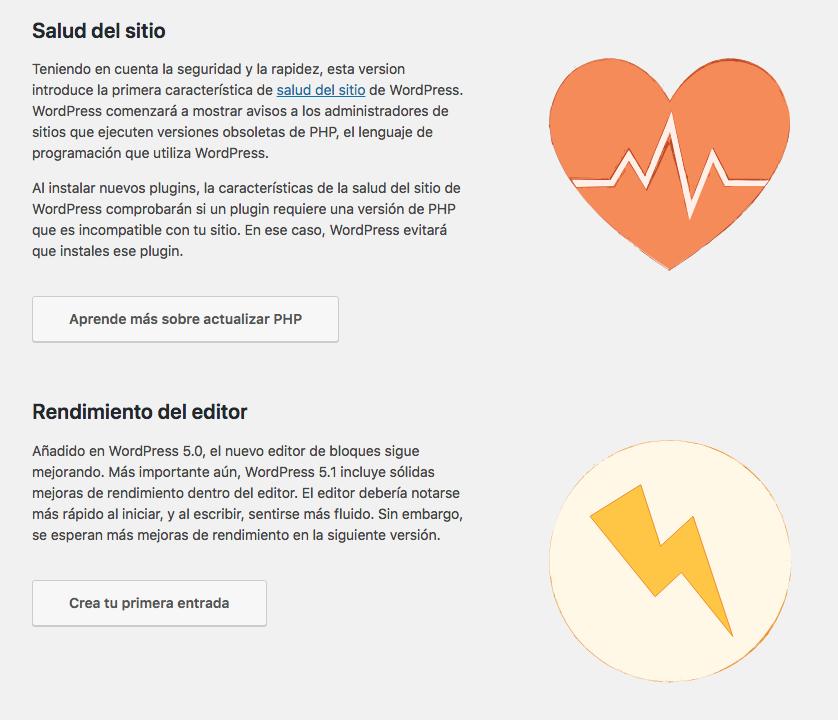 WordPress 5.1 Salud del sitio
