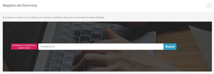 Encuentra un nombre de domino web